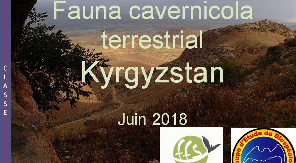 Biospeology in Kyrgyzstan