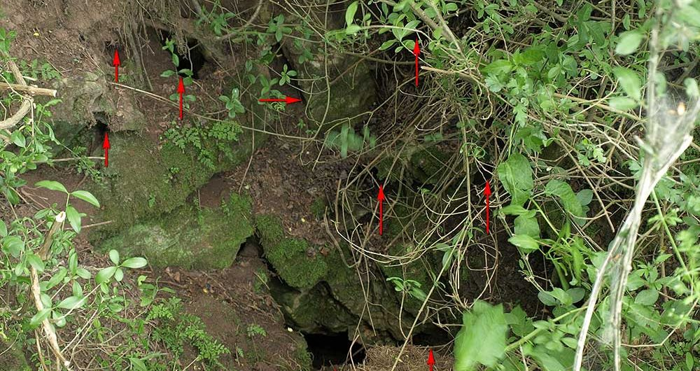 First Application of Near Infrared Imaging for Remote Location of Caves